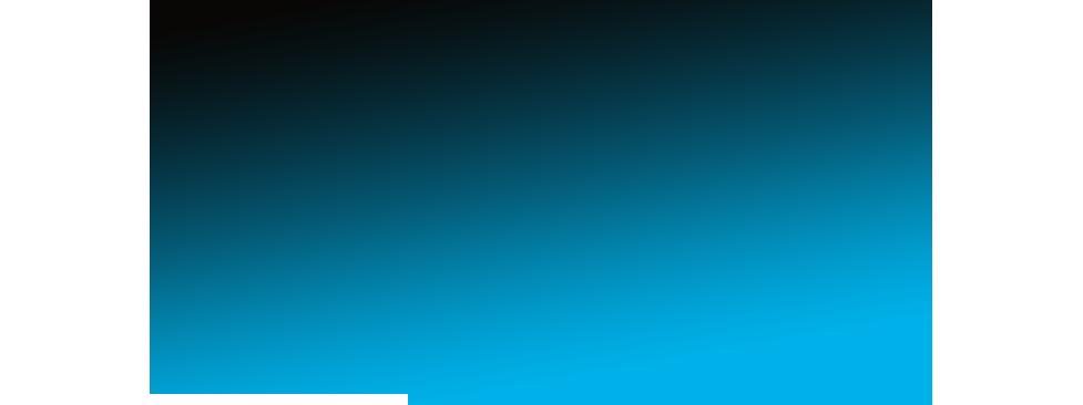 SEO Line